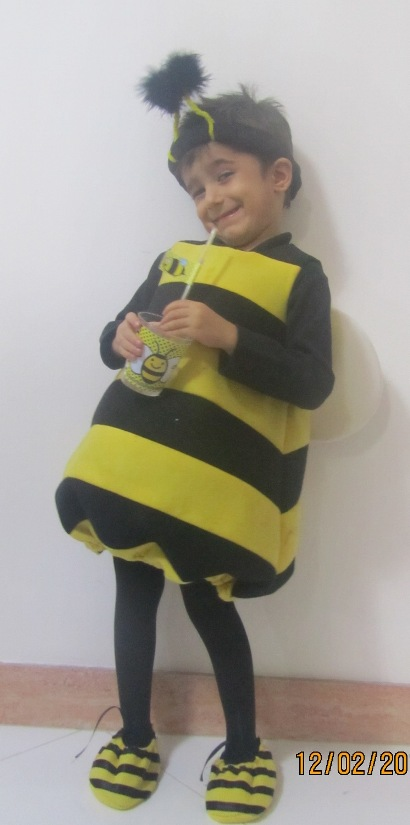 امیرمحمد زنبوری